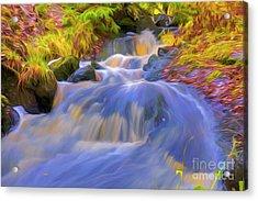 Autumn's Creek 3 Acrylic Print