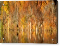 Acrylic Print featuring the photograph Autumns Final Palette by Everet Regal