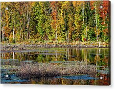 Acrylic Print featuring the photograph Autumns Quiet Moment by Karol Livote