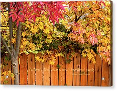 Autumn's Smile Acrylic Print by Mick Anderson