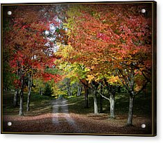 Autumn's Walk Acrylic Print by Trina Prenzi