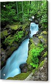 Avalanche Creek Acrylic Print by Matt Tilghman