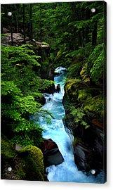 Avalanche Creek Waterfalls Acrylic Print