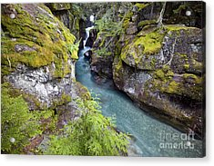 Avalanche Gorge In Glacier National Park Acrylic Print