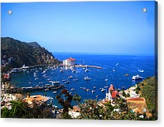 Avalon Harbor At Catalina Acrylic Print by Catherine Natalia  Roche