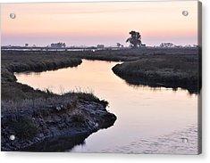 Twilight Marshland Acrylic Print