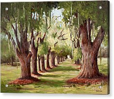 Avenue Of Oaks Iv  Acrylic Print