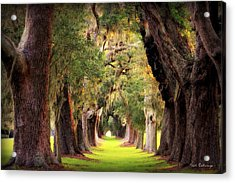 Avenue Of Oaks Sea Island Golf Club St Simons Island Georgia Art Acrylic Print by Reid Callaway