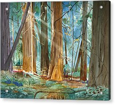 Acrylic Print featuring the painting Avenue Of The Giants by John Norman Stewart