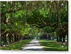 Avenue Of The Oaks At Boonville Plantation Acrylic Print