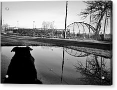 Acrylic Print featuring the photograph Awaiting Opening Day by Jeanette O'Toole