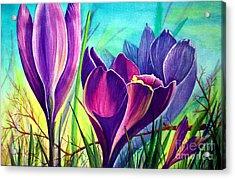 Awakening Acrylic Print by Nancy Cupp