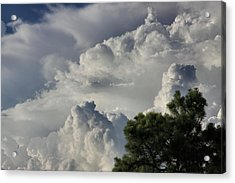 Awesome Cloulds And A Pine Tree Acrylic Print by Maris Salmins