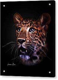 Awestruck Acrylic Print by Lauren Goia