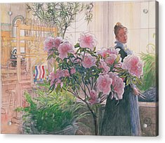 Azalea Acrylic Print by Carl Larsson