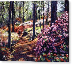 Azalea Forest Acrylic Print by David Lloyd Glover