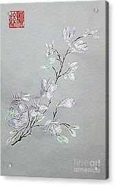 Azaleas Blooming Acrylic Print