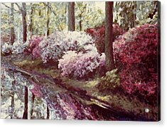 Azaleas By The Lake Acrylic Print