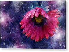 Acrylic Print featuring the photograph Azure Claret by Kathleen Stephens