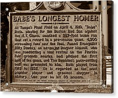 Babes Longest Homer Acrylic Print by David Lee Thompson