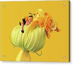 Baby Bee Acrylic Print