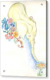 Baby Elephant Acrylic Print
