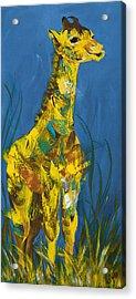 Baby Giraffe  Acrylic Print by Catherine Jeltes