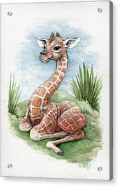 Acrylic Print featuring the painting Baby Giraffe by Lora Serra