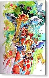 Baby Giraffe With Mammy Acrylic Print by Kovacs Anna Brigitta