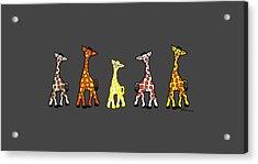 Baby Giraffes In A Row Acrylic Print