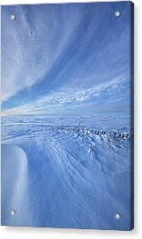 Acrylic Print featuring the photograph Baby It's Cold Outside by Phil Koch
