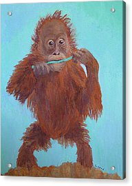 Baby Orangutan Playing Acrylic Print by Margaret Saheed