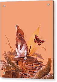 Baby Rabbit Acrylic Print by English School