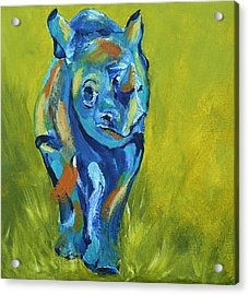 Baby Rhino Animal Art Painting Acrylic Print by Catherine Jeltes
