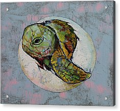 Baby Sea Turtle Acrylic Print by Michael Creese