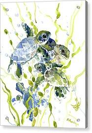 Baby Sea Turtles In The Sea Acrylic Print