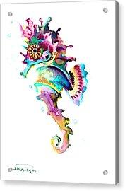 Baby Seahorse Acrylic Print