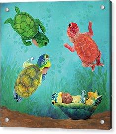 Baby Turtles Acrylic Print by Anne Geddes