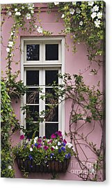 Back Alley Window Box - D001793 Acrylic Print