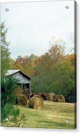 Back At The Barn Acrylic Print by Jan Amiss Photography