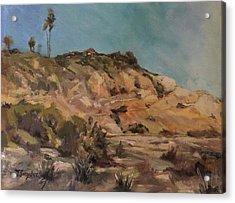 Back Bay Cliff 1 Acrylic Print