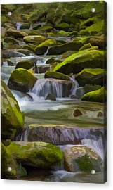 Back Country Stream II Acrylic Print by Jon Glaser