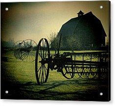Back On The Farm Acrylic Print by DMSprouse Art