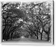 Back Roads Acrylic Print by Kim Zwick