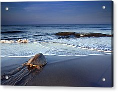 Back To The Sea Acrylic Print