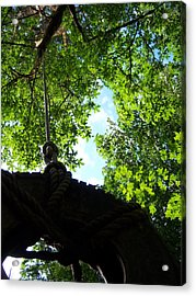 Back Under The Tire Swing Acrylic Print by Ken Day