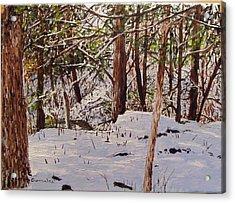 Back Yard Snow Acrylic Print by Sharon  De Vore