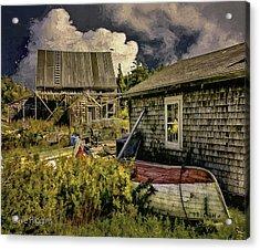 Back Yard, Stonington, Maine Acrylic Print by Dave Higgins