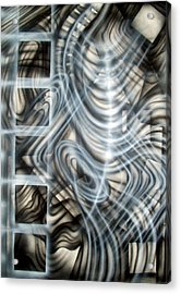Backbone Acrylic Print by Leigh Odom