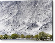 Backdrop Of Sand, Chumathang, 2006 Acrylic Print